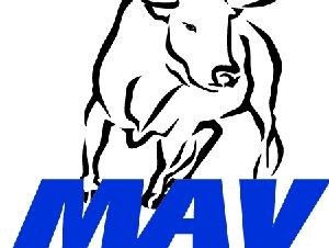 MAV Industrial Solutions Inc.